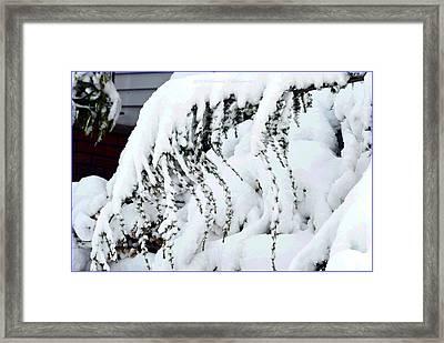 American Winter Snow Framed Print by Sonali Gangane