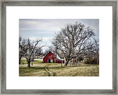 Americana Framed Print by Cricket Hackmann