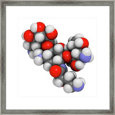 Amikacin Aminoglycoside Antibiotic Framed Print by Molekuul