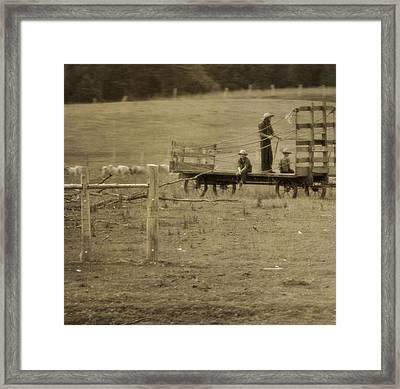 Amish Boys On The Farm Framed Print