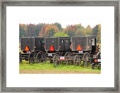 Amish Buggies 2 Framed Print by Mary Carol Story