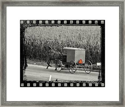 Amish Buggy Monochrome Framed Print by Terry Weaver