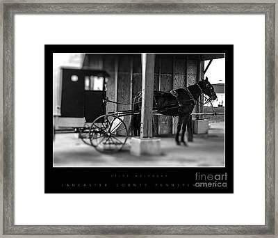 Amish Buggy Parking Framed Print