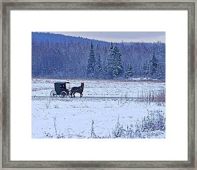 Amish Carriage Framed Print by Jack Zievis