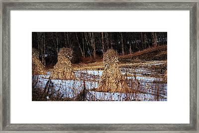 Amish Corn Shocks Framed Print by R A W M