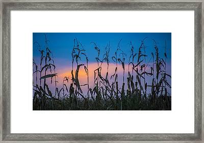 Amish End Of Harvest Framed Print by Bruce Neumann