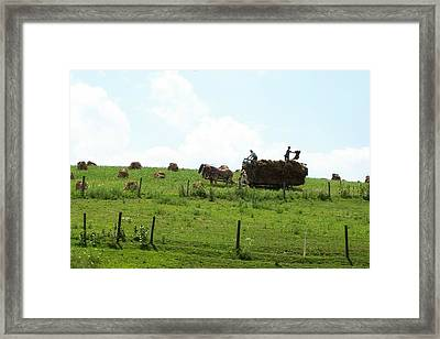 Amish Fall Harvest Framed Print by R A W M