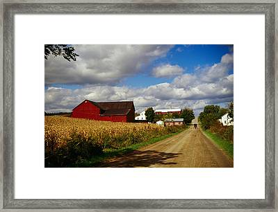 Amish Farm Buildings And Corn Field Framed Print by Panoramic Images