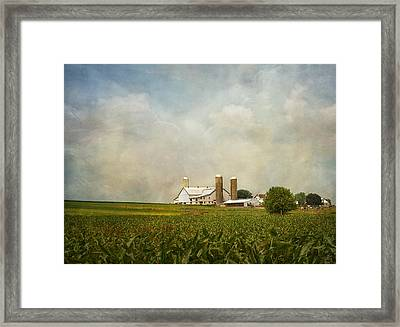 Amish Farmland Framed Print by Kim Hojnacki