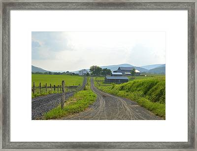 Amish Farmstead #1 - Siglerville Pa Framed Print