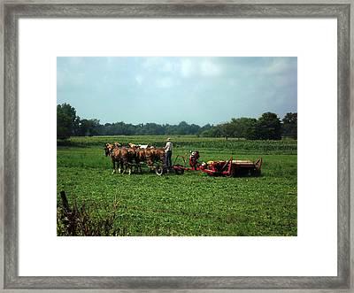 Amish Field Work Framed Print by Joyce  Wasser