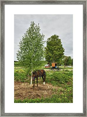 Amish Gone Fishing Framed Print by James Neiss