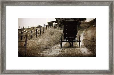 Amish Horse And Buggy Framed Print