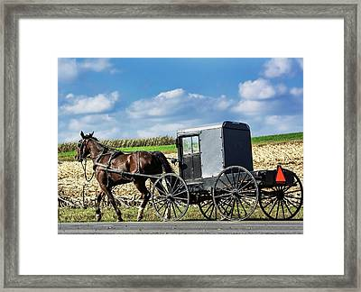 Amish Horse Carriage Framed Print