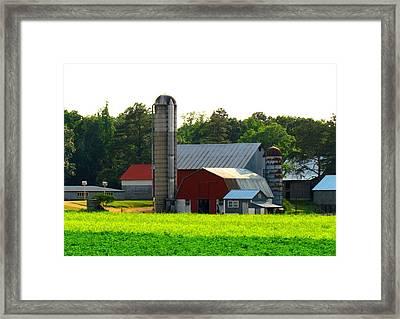 Amish Life Framed Print by Trish Clark