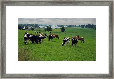 Amish Pastureland  Framed Print by Joyce  Wasser