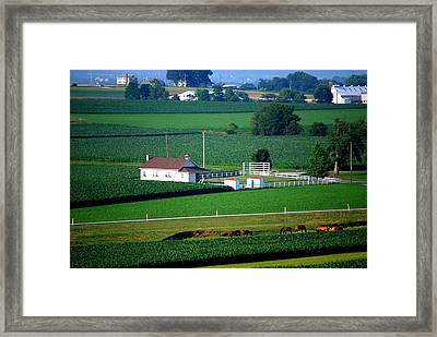 Amish School Framed Print by Mary Beth Landis