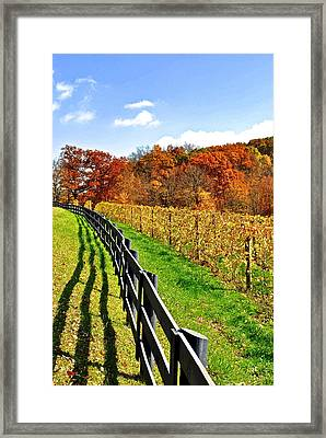 Amish Vinyard Framed Print by Frozen in Time Fine Art Photography