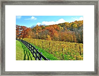 Amish Vinyard Two Framed Print by Frozen in Time Fine Art Photography