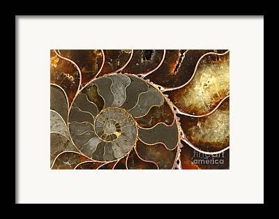 Minerals Framed Prints