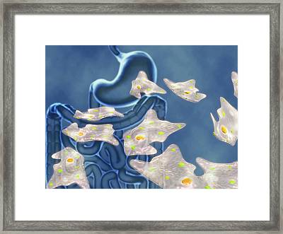 Amoebic Dysentery Framed Print by Harvinder Singh