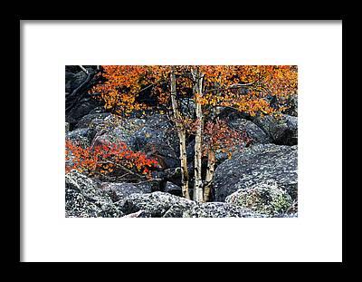Boulder Framed Prints