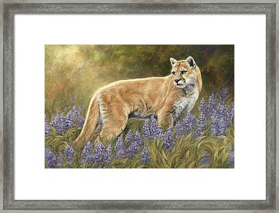Among The Flowers Framed Print by Lucie Bilodeau