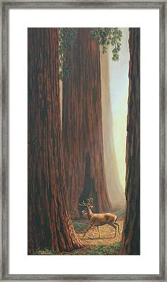 Sequoia Trees - Among The Giants Framed Print