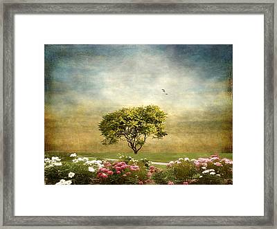 Among The Peonies Framed Print by Jessica Jenney