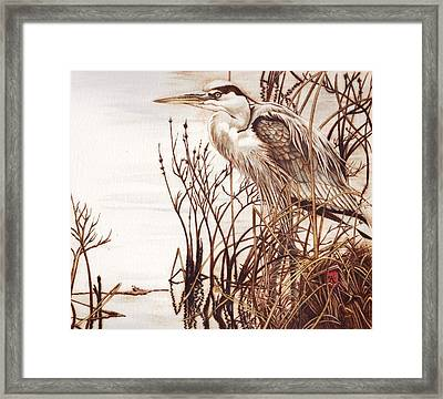Among The Reeds Framed Print by Cynthia Adams