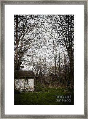 Among The Trees Framed Print by Margie Hurwich