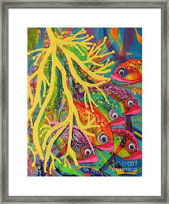 Amongst The Coral Framed Print by Lyn Olsen