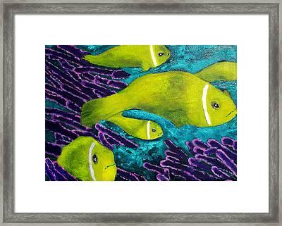 Amongst The Coral Framed Print