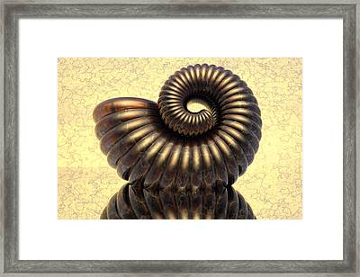 Amonit4 Framed Print by Jan Wolf