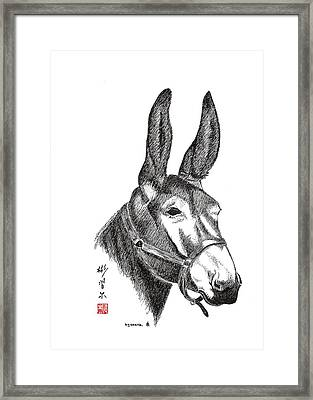 Amos Framed Print