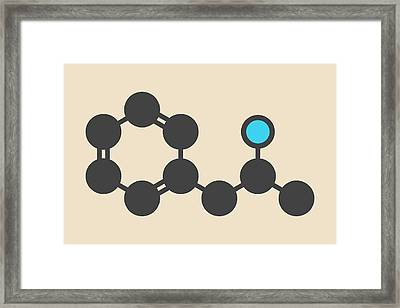 Amphetamine Molecule Framed Print