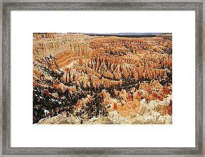 Amphitheatre At Bryce Canyon Framed Print by Larry Ricker