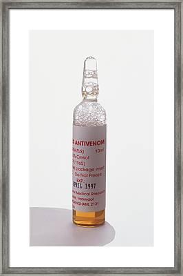 Ampoule Of Antivenin Serum Framed Print
