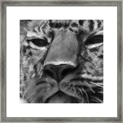 Amur Leopard Digital Freehand Bw Painting Framed Print