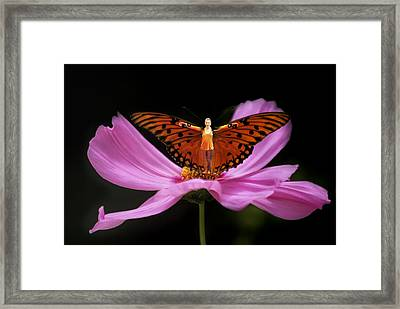 Amy The Butterfly Framed Print