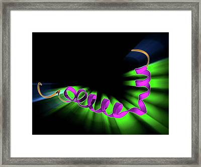 Amyloid Beta Protein Molecule Framed Print
