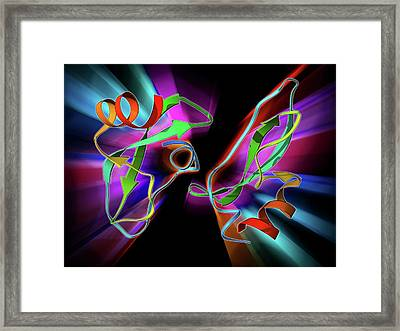 Amyloid Precursor Protein Molecule Framed Print by Laguna Design