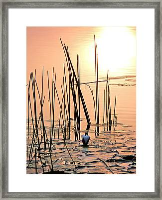 An Alabama Sunrise Framed Print by JC Findley