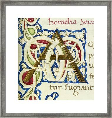 An Alphabet Initial Ornamental Letter Framed Print