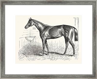 An American Racer In England, Mr. Keenes Foxhall Framed Print by American School