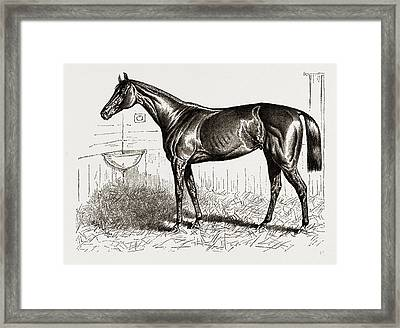 An American Racer In England-mr. Keenes Foxhall Framed Print by Litz Collection