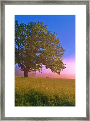 An All-american Sunrise Framed Print