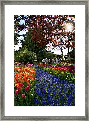 An Angel In Eden Framed Print by Eti Reid