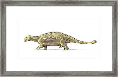 An Ankylosaurus Dinosaur With Full Framed Print