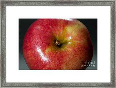 An Apple Framed Print by Dan Holm